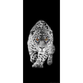 Fototapet Leopard