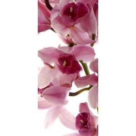 Fototapet Orhidee roz