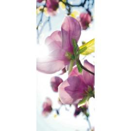 Fototapet usi Magnolii