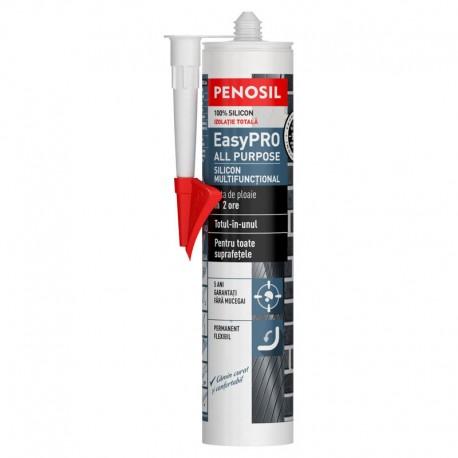 Silicon exterior Penosil Easy Pro transparent