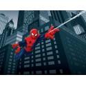 Fototapet pentru camere copii - Spiderman