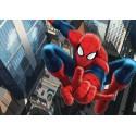 Fototapet pentru camere copii - Spiderman2