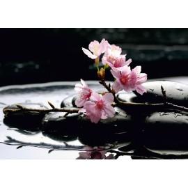 Amenajare cu Fototapet Flori de cires