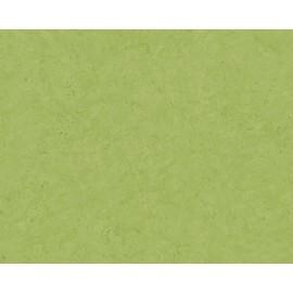 Tapet Beton verde