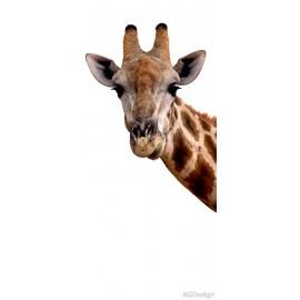 Fototapet Girafa