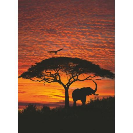 Fototapet Apus de soare in savana