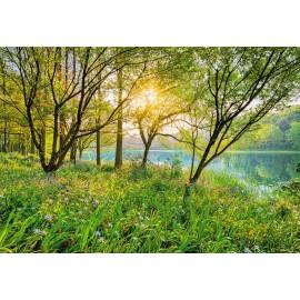 Fototapet Peisaj Spring Lake