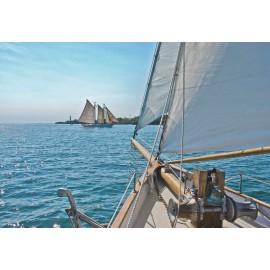 Fototapet Peisaj marin - Sailing