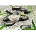 Fototapet floral Puritatea orhideei albe
