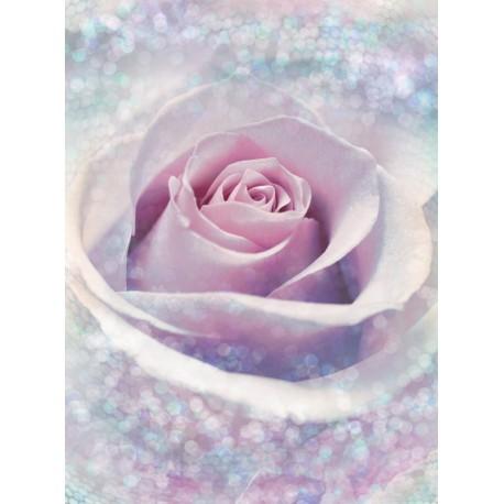 Fototapet Trandafir roz delicat