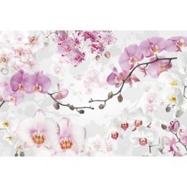 Amenajare eleganta cu Fototapet Orhidee alb-violet