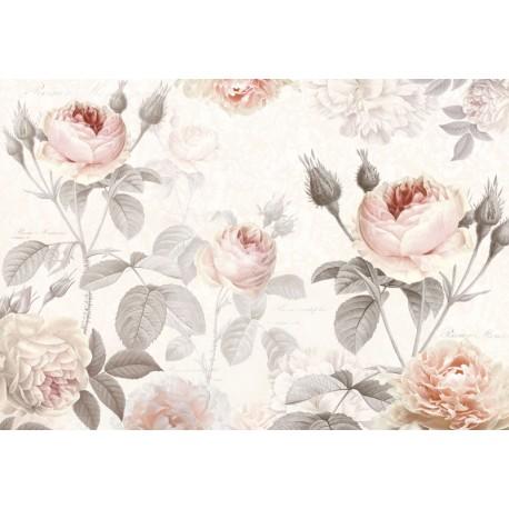 Fototapet Trandafiri roz in acuarela