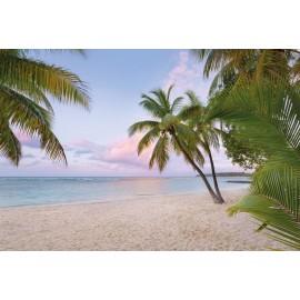Decorare cu Fototapet Plaja tropicala dimineata