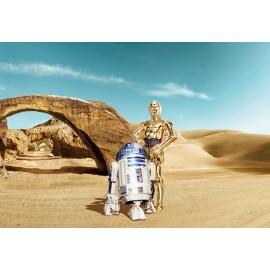 Fototapet Star Wars R2-D2 si C-3PO