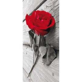 Fototapet Trandafir rosu