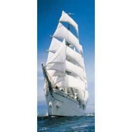 Fototapet usa Yacht cu vele