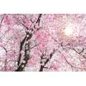 Fototapet floral Cires inflorit