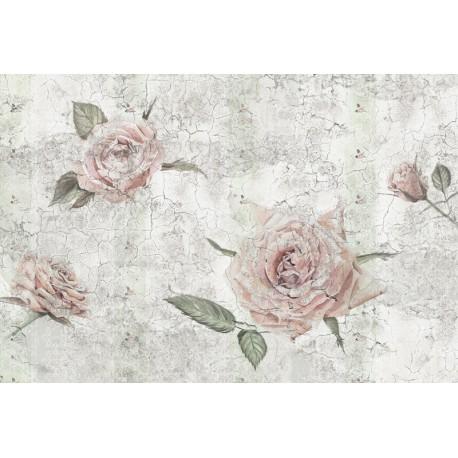 Fototapet floral Trandafiri Vintage