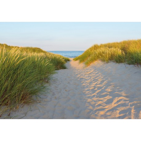 Fototapet living Plaja salbatica