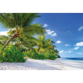 Fototapet Plaja Reunion
