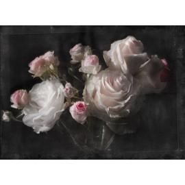 Fototapet dormitor Trandafiri roz Vintage
