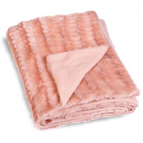 Patura roz captusita Antarctic