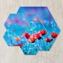 Tablouri canvas Maci rosii