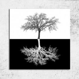 Tablou alb negru Copac in oglinda