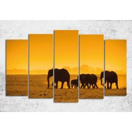 Tablouri canvas 5 piese cu elefanti