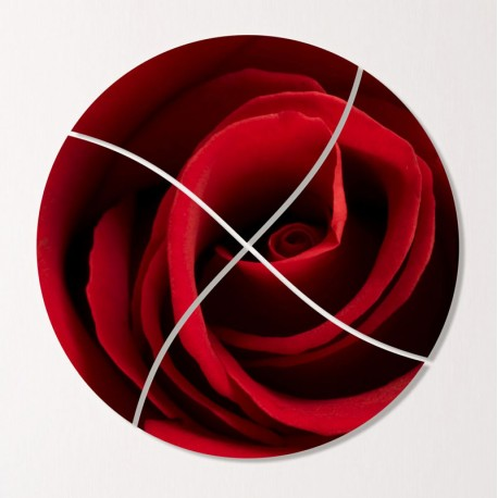 Tablouri multicanvas Trandafir rosu