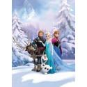 Fototapet Frozen - Regatul iernii
