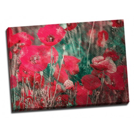 Tablou flori - Maci rosii