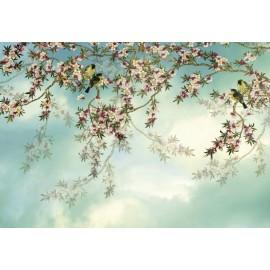 Fototapet design Sakura