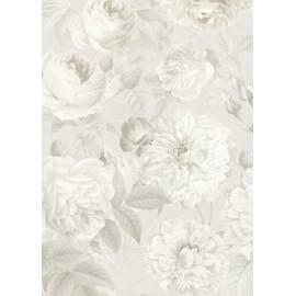 Fototapet alb-negru Trandafiri